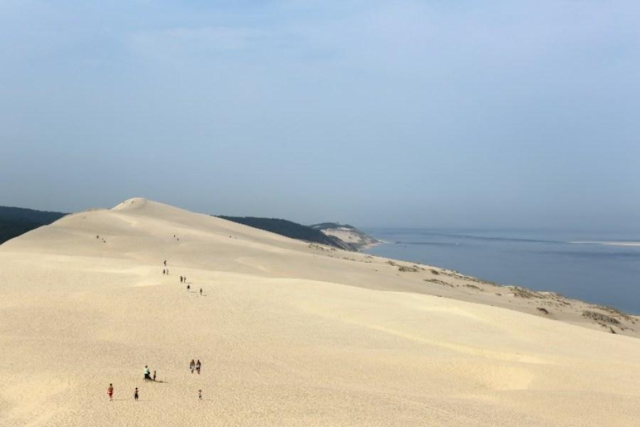 duna pilat