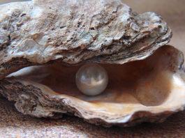 regalare perle