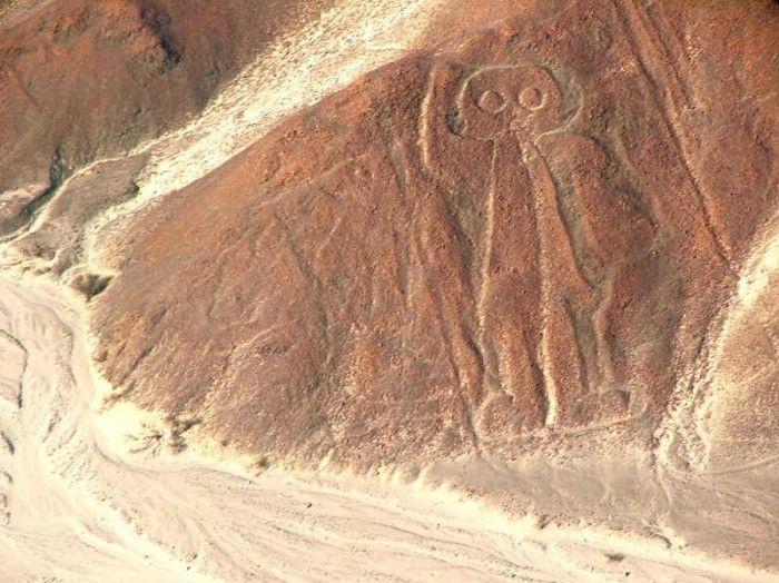 disegni di nazca