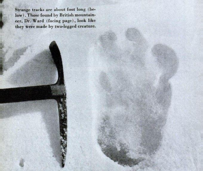 uomo delle nevi