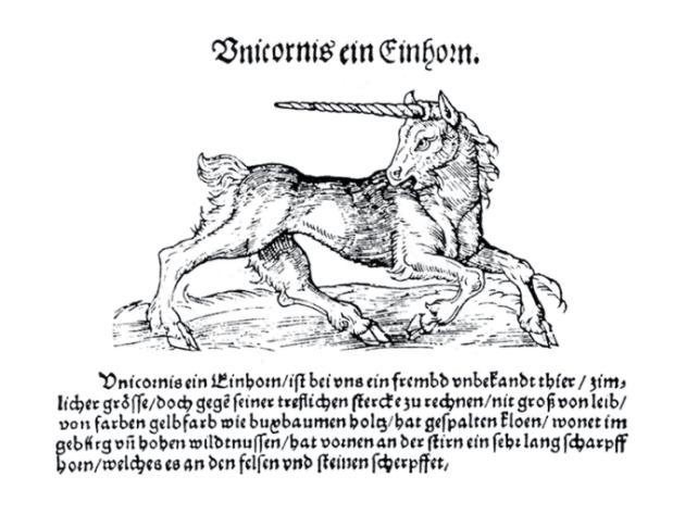 cavallo unicorno