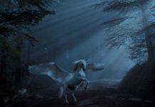 unicorno significato
